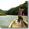 Expert Embera boatman Olmedo helps pole his up piragua (dugout canoe) up the Rio Chagres through the Panamanian jungle.