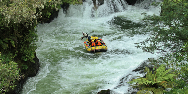 Rafting to Kaituna Falls in New Zealand