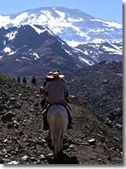 Arriero (Chilean cowboy) guides lead horseback treks through the Andes Mountains on the Chile-Argentina border.