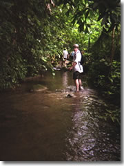 The author on his jungle trek—at this point, only ankle deep in the water